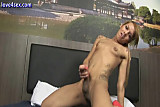 Tatoo tranny stripping and jerking